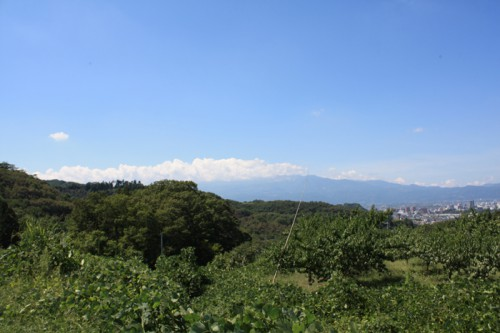 今日も吾妻小富士に雲がかかっていました。残念。