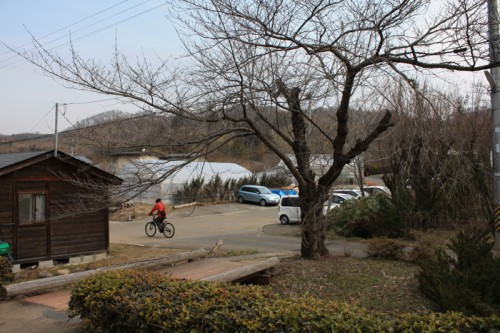 今日も少し暖かかったせいか花見山公園には車がちらほら。県外ナンバーの車もみられました。