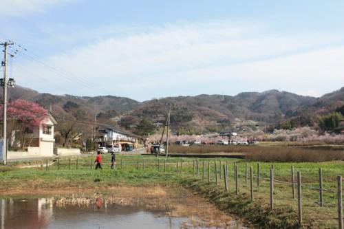 ここから花見山公園入口までは散策しながら15分位です。