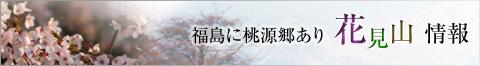 hanamiblog2