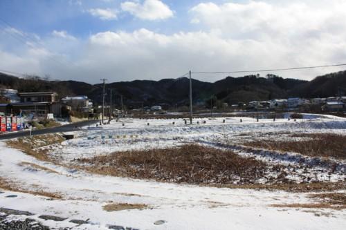 寒波の影響でとても冷えます。