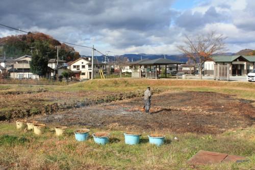 蓮畑が増えるよう、 焼かれていました。