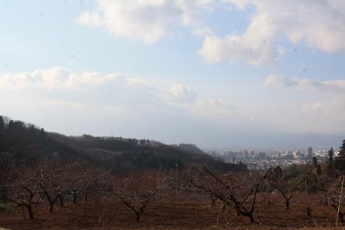 福島県福島市花見山公園の情報 吾妻連峰の写真