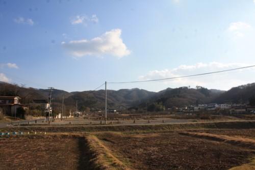 福島県福島市花見山公園の情報 ガマの写真
