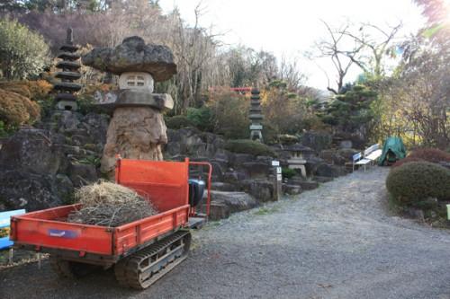 福島県福島市花見山公園の情報 花見山のツツジ庭の写真