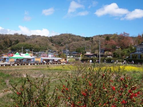 140415 福島県福島市花見山公園の情報 ぼけ 物産ブース