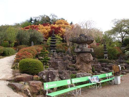 160422h12 福島県福島市花見山公園の情報 杖