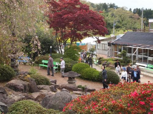 160422h3 福島県福島市花見山公園の情報
