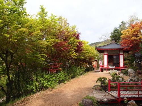 160422h6 福島県福島市花見山公園の情報 不倒堂 デショウジョウ