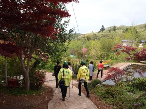 160422h9 福島県福島市花見山公園の情報 睡蓮