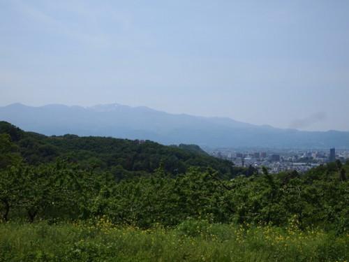 150519 福島県福島市花見山公園の情報 吾妻連峰