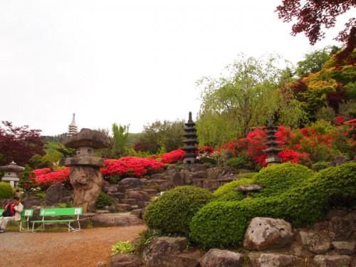福島県福島市花見山公園の情報 庭園 つつじ