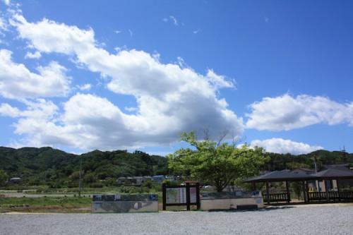6100 福島県福島市花見山公園の情報 2016年6月1日