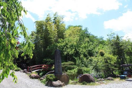 6110 福島県福島市花見山公園の情報 2016年6月1日