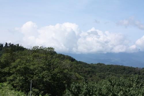 福島県福島市花見山公園の情報 2016年9月15日 IMG_6801