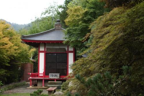 福島県福島市花見山公園の情報 IMG_6908
