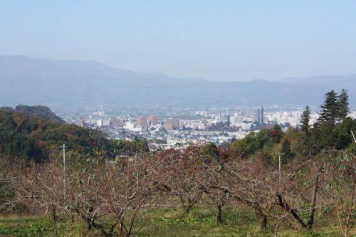 福島県福島市花見山公園の情報2016年11月7日 img_7357