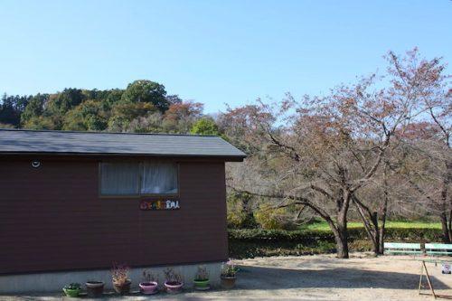 福島県福島市花見山公園の情報2016年11月7日 img_7362