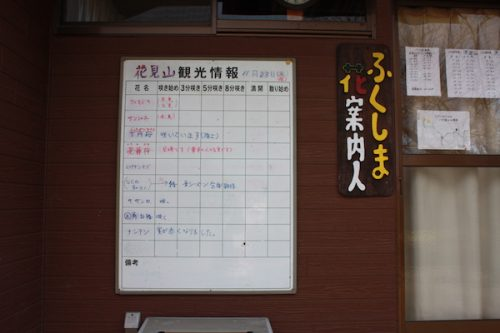 福島県福島市花見山公園の情報2016年12月2日 img_7476