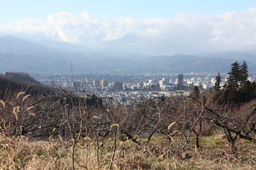 福島県福島市花見山公園の情報2016年12月2日 img_7581