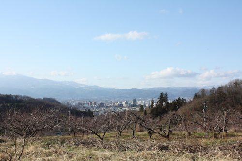 福島県福島市花見山公園の情報2016年12月21日 IMG_7674