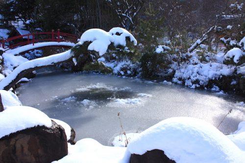 福島県福島市花見山公園の情報2017年1月17日 IMG_7709