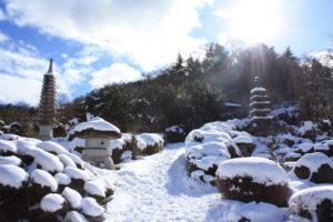 福島県福島市花見山公園の情報2017年1月17日 IMG_7729