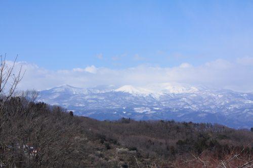 福島県福島市花見山公園の情報2017年3月17日 IMG_7834