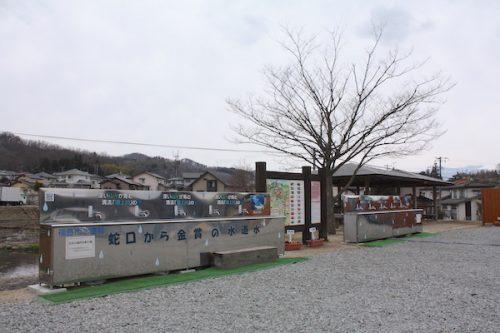 福島県福島市花見山公園の情報2017年3月31日 IMG_7915
