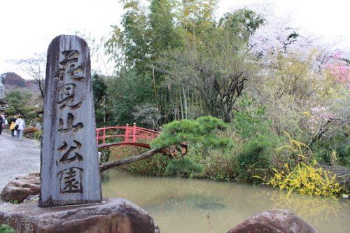 福島県福島市 花見山公園の情報2017年4月18日 IMG_8162