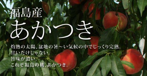 福島 花のブランド 桃・あかつき