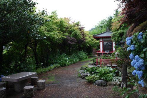 福島県福島市 花見山公園の情報2017年7月4日 IMG_9083