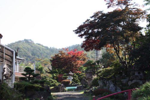 福島県福島市 花見山公園の情報2017年10月24日 IMG_9433