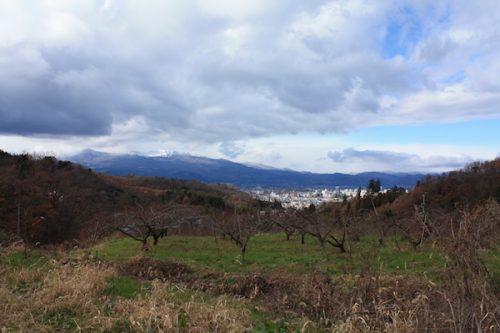 福島県福島市 花見山公園の情報2017年12月5日 IMG_9828