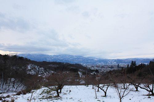 福島県福島市 花見山公園の情報2018年1月5日 花の谷コース頂上 180105H9907