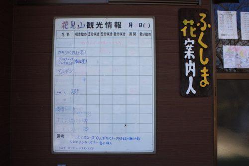 福島県福島市 花見山公園の情報2018年2月16日 IMG_9954