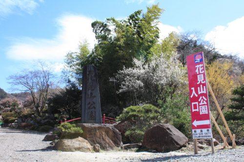 福島県福島市 花見山公園の情報2018年3月23日 IMG_0199