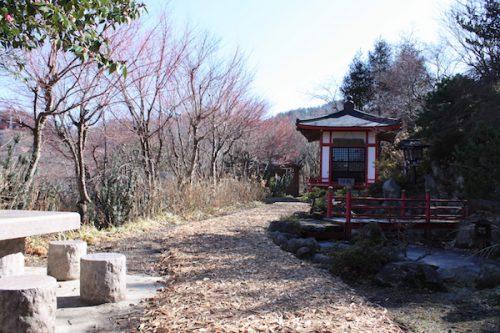 福島県福島市 花見山公園の情報2018年3月6日 IMG_9976