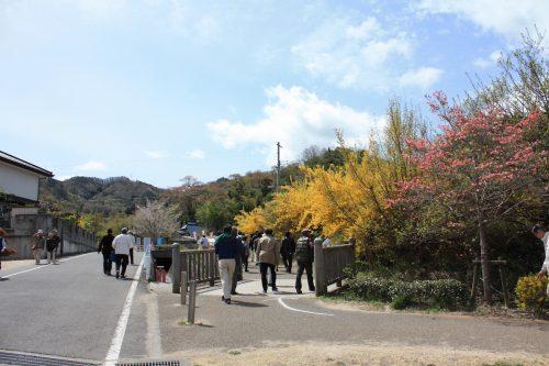 福島県福島市 花見山公園の情報2018年4月16日 IMG_0696