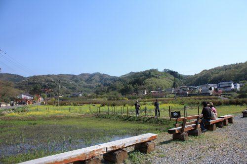 福島県福島市 花見山公園の情報2018年4月20日 IMG_0713