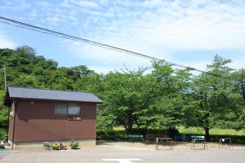 福島県福島市 花見山公園の情報2018年5月15日 IMG_1021