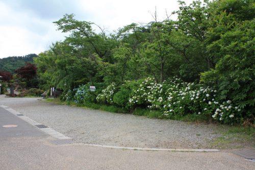 福島県福島市 花見山公園の情報2018年6月19日 IMG_4844