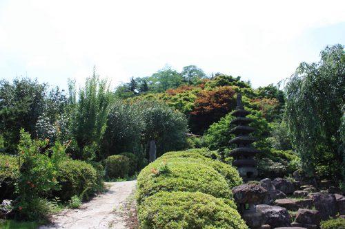 福島県福島市 花見山公園の情報 2018年7月12日 IMG_4910
