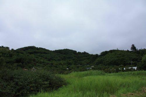 福島県福島市 花見山公園の情報 2018年8月6日 IMG_5133