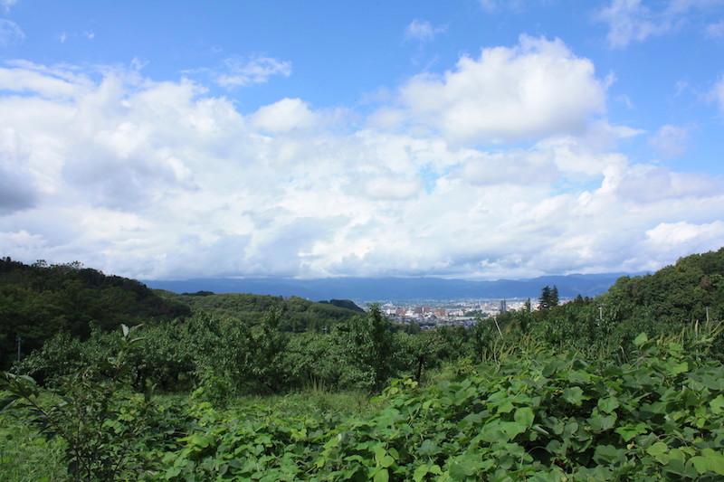 福島県福島市 花見山公園の情報 2018年9月5日 IMG_5165