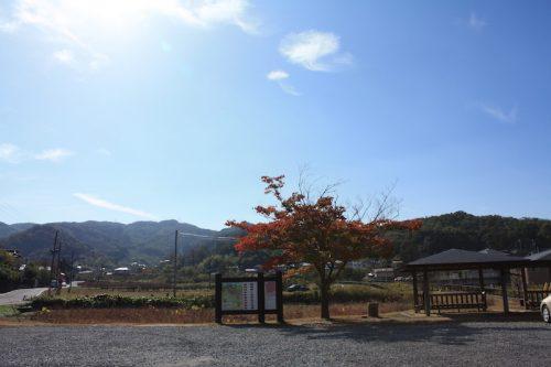 福島県福島市 花見山公園の情報 2018年10月26日 IMG_5348
