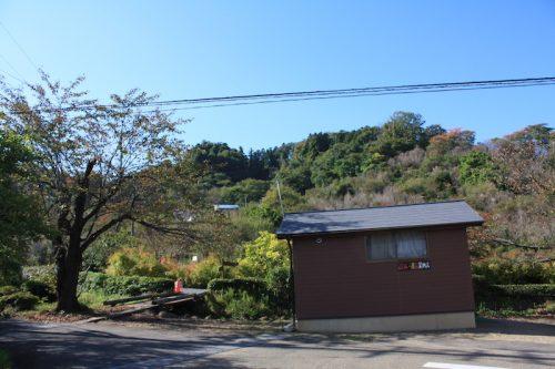 福島県福島市 花見山公園の情報 2018年10月26日 IMG_5350
