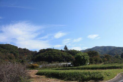 福島県福島市 花見山公園の情報 2018年10月26日 IMG_5360