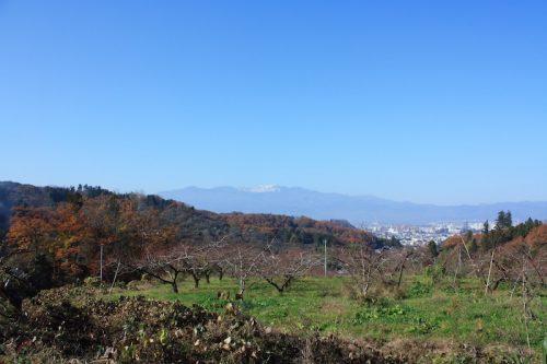 福島県福島市 花見山公園の情報 2018年11月27日 IMG_5497