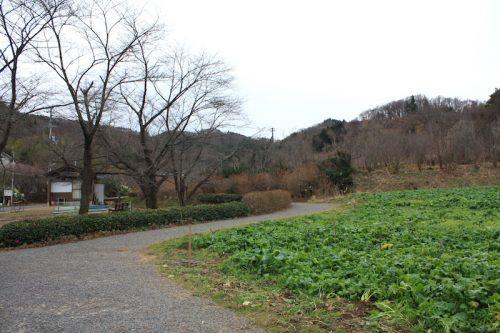 福島県福島市 花見山公園の情報 2018年12月11日 IMG_5505